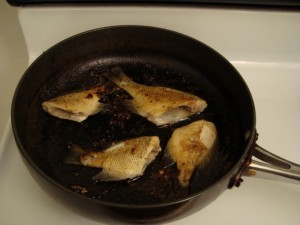 Panfried Bluegill